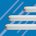 three T12 fluorescent tubes