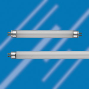 two T5 fluorescent tubes