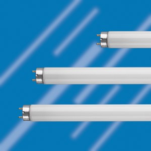three T8 fluorescent tubes