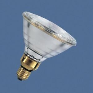 Low Voltage Par 38